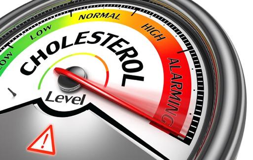 tudo sobre o Colesterol