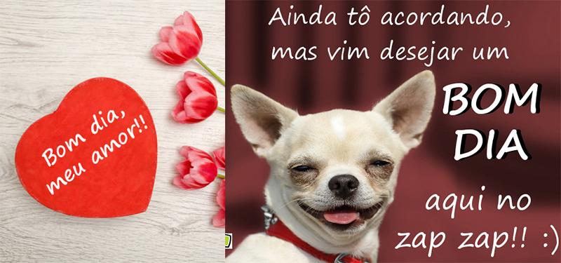 Imagens De Bom Dia Para Whatsapp Facebook Novas Fotos