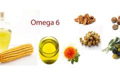 Ômega 6: Benefícios, Malefícios e Alimentos Que Contêm