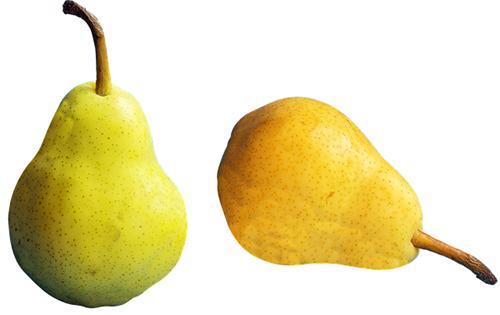 Pera é um fruta