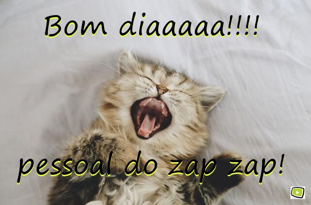 Bom Dia Para Crush: Imagens De Bom Dia: Para Whatsapp, Facebook, Namorado