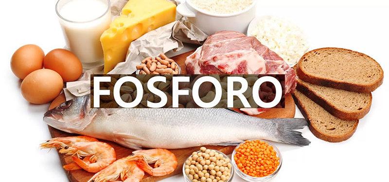 Fosforo Mineral: Função, Deficiência e Excesso.