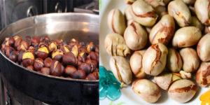 Caroço de jaca: benefícios, Valor Nutricional e como cozinhar!