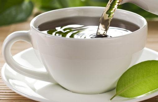 chá de Miconia Albicans