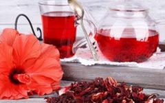 Chá de Hibisco Benefícios, Como Fazer e Efeitos Colaterais.