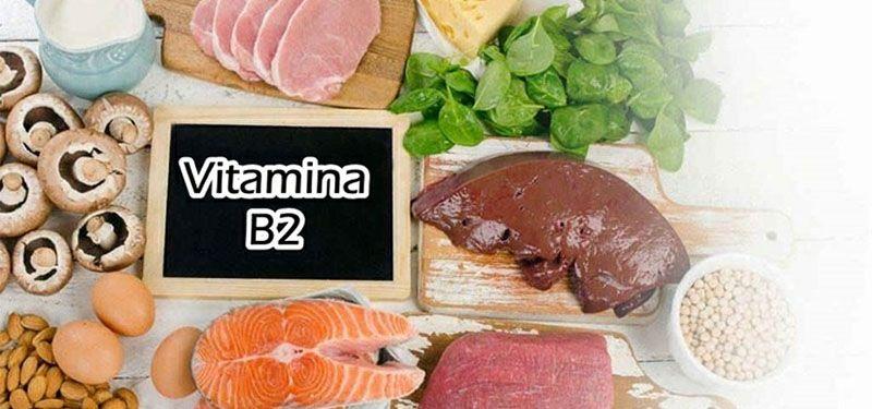 Vitamina b2: Função, Alimentos, Carência e Excesso.