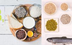 Vitamina b1 para que serve, engorda? Alimentos  e Onde Comprar.