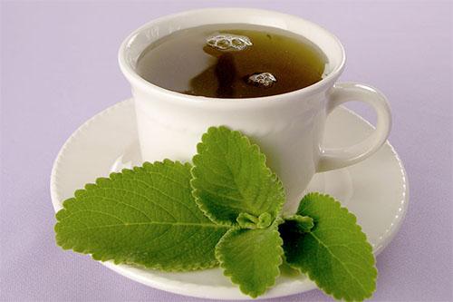 chá de boldo como fazer