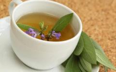Chá de Sálvia: para que serve, benefícios e mais!