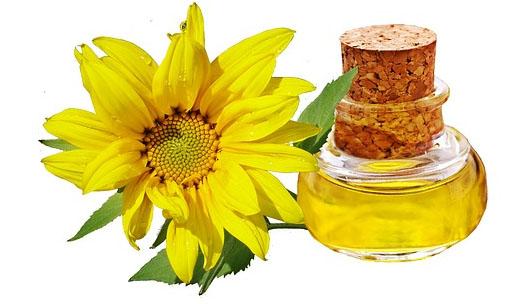 óleo de girassol é saudável