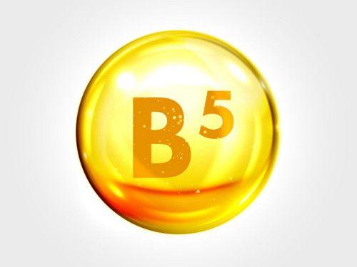 vitamina b5 o que é