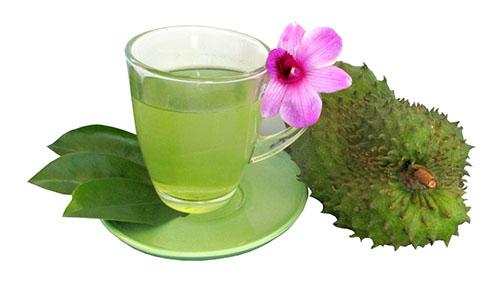 Benefícios do Chá de Graviola