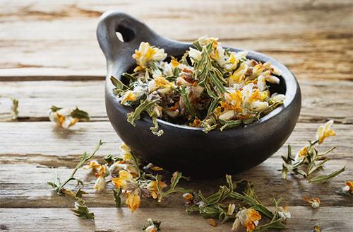Chá de Carqueja emagrece