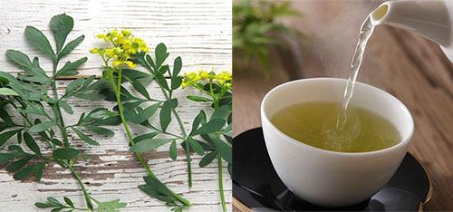 Chá de arruda como fazer