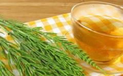Chá de Cavalinha Como Fazer e Indicações.