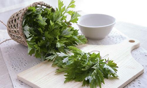 Como preparar o chá de artemísia?