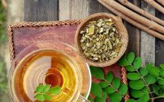 Moringa: como essa planta pode oferecer benefícios para a saúde.
