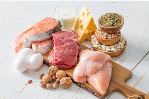 alimentos que contem proteina