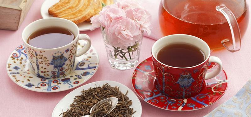 Chá de Valeriana: benefícios, como preparar e efeitos colaterais