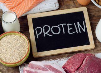 lista de proteinas