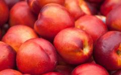 O que é nectarina, benefícios, calorias e como plantar